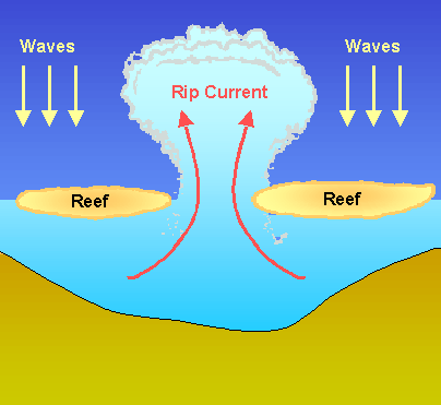 rip currents rip currents move perpendicular to the shore and are ...